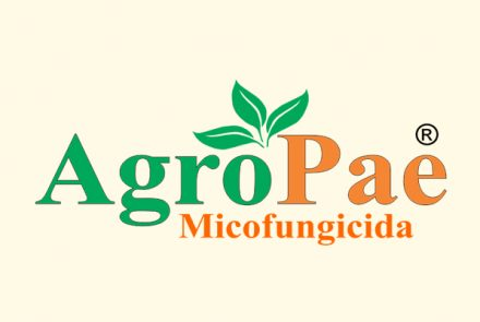 Agropae