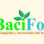 Bacifol